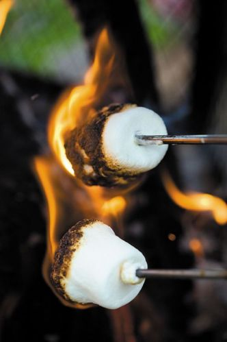 roast-marshmallow